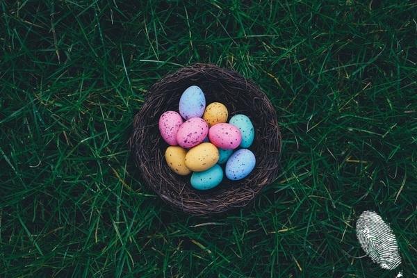 Пази яйцата